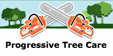 Progressive Tree Care