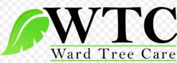 Ward Tree Care