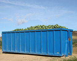 New Zion Dumpster Rental Prices