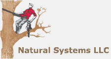 Natural Systems LLC